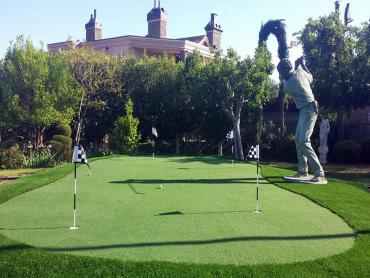 Artificial Grass Photos: Golf Putting Greens Flatonia Texas Fake Turf  Back Yard