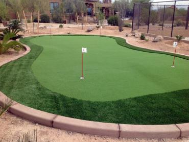 Artificial Grass Photos: Golf Putting Greens Holland Texas Synthetic Turf  Back Yard
