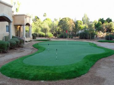 Artificial Grass Photos: Golf Putting Greens Horseshoe Bay Texas Fake Turf  Back Yard