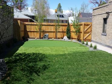 Artificial Grass Photos: Golf Putting Greens Hudson Bend Texas Fake Grass  Back Yard