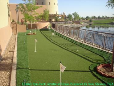 Golf Putting Greens Sunset Valley Texas Synthetic Grass  Back artificial grass