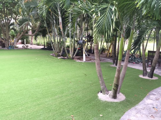 Artificial Grass Photos: Grass Installation Sealy, Texas Garden Ideas, Commercial Landscape