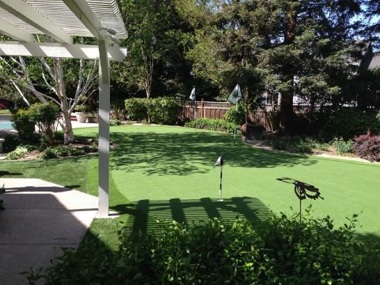 Artificial Grass Photos: Grass Turf Bellmead, Texas Lawns