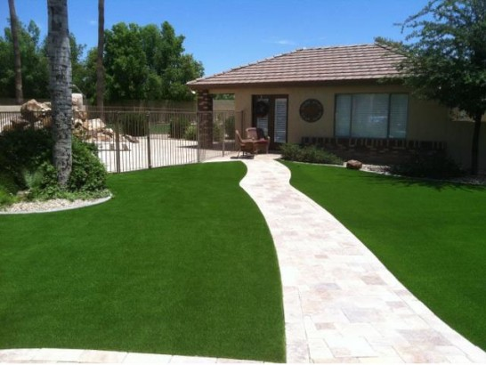 Artificial Grass Photos: Grass Turf Natalia, Texas Roof Top, Front Yard Landscaping Ideas