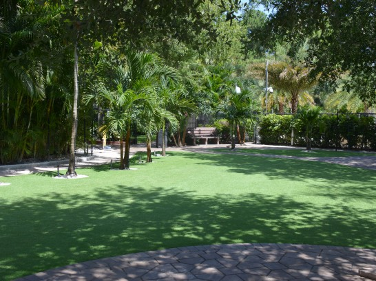 Artificial Grass Photos: Lawn Services Medina, Texas Home And Garden, Commercial Landscape