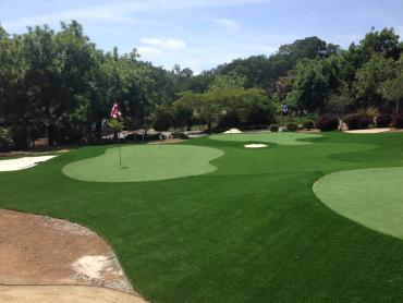 Putting Greens Elgin Texas Artificial Turf  Front Yard artificial grass