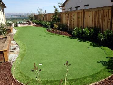 Artificial Grass Photos: Putting Greens Northcliff Texas Fake Grass  Back Yard