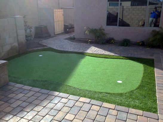 Artificial Grass Photos: Putting Greens Snook Texas Synthetic Turf  Back Yard