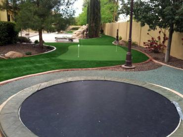 Artificial Grass Photos: Putting Greens Staples Texas Fake Turf  Back Yard