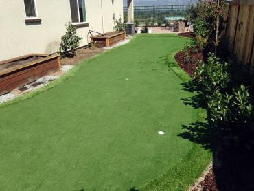 Artificial Grass Photos: Putting Greens Thorndale Texas Synthetic Grass  Back Yard