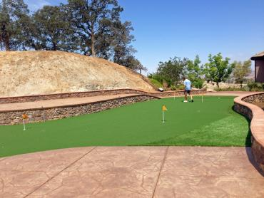 Artificial Grass Photos: Putting Greens Waelder Texas Synthetic Turf  Back Yard