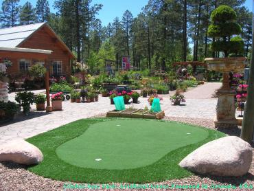 Artificial Grass Photos: Putting Greens West Lake Hills Texas Fake Turf  Back Yard
