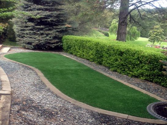 Artificial Grass Photos: Synthetic Grass Castle Hills Texas Lawn