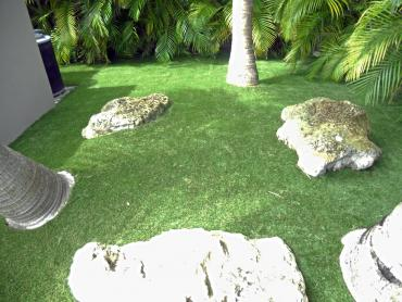 Artificial Grass Photos: Synthetic Grass Creedmoor Texas  Landscape  Back Yard
