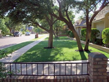 Artificial Grass Photos: Synthetic Grass Jarrell Texas Lawn  Front Yard
