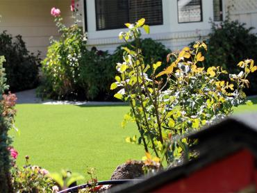 Artificial Grass Photos: Synthetic Grass Kempner Texas Lawn  Front Yard