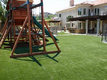Synthetic Grass Lakeway Texas Playgrounds  Back Yard artificial grass