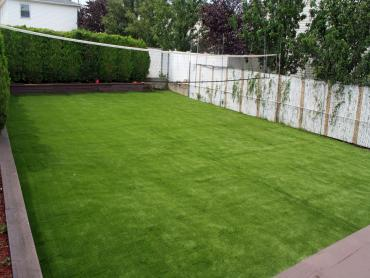 Artificial Grass Photos: Synthetic Grass McDade Texas  Landscape  Back Yard