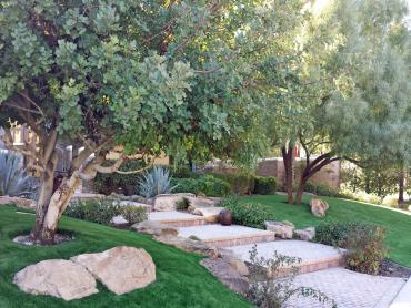 Artificial Grass Photos: Synthetic Grass Meadowlakes Texas  Landscape  Back Yard