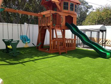 Artificial Grass Photos: Synthetic Grass Redwood Texas Playgrounds  Back Yard