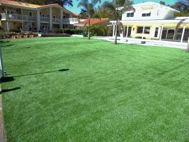 Synthetic Grass Round Mountain Texas  Landscape  Swimming artificial grass