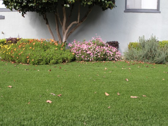 Artificial Grass Photos: Synthetic Grass Somerset Texas  Landscape  Front Yard