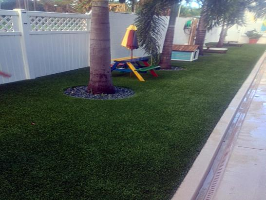 Artificial Grass Photos: Synthetic Grass Terrell Hills Texas Lawn  Back Yard