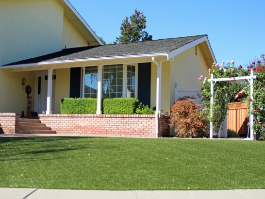 Artificial Grass Photos: Synthetic Grass Yorktown Texas Lawn  Front Yard