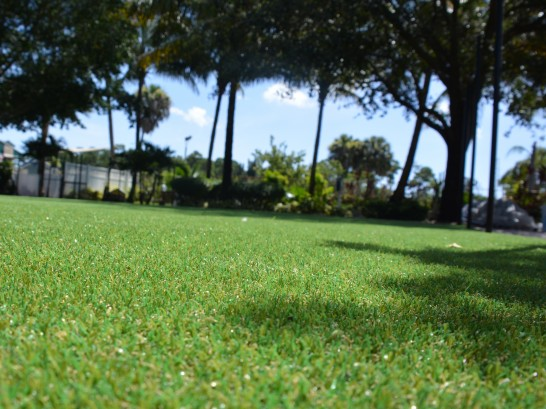 Artificial Grass Photos: Synthetic Lawn Runge, Texas Landscape Ideas, Recreational Areas