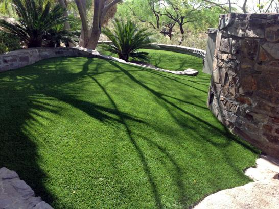 Artificial Grass Photos: Synthetic Pet Grass Converse Texas for Dogs
