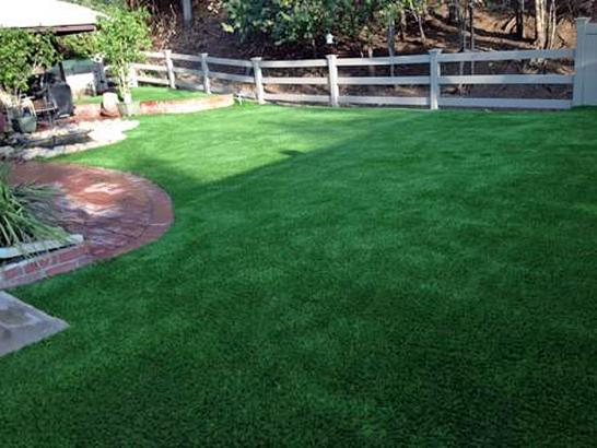Artificial Grass Photos: Synthetic Pet Grass Somerville Texas Installation  Back Yard