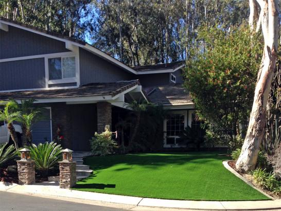 Synthetic Turf Calvert Texas  Landscape  Front Yard artificial grass