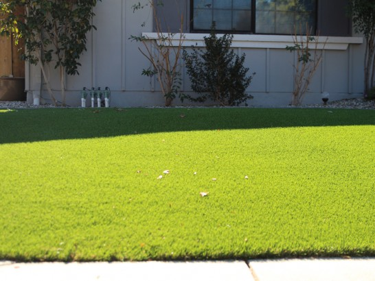Artificial Grass Photos: Synthetic Turf Castroville Texas  Landscape