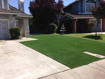 Artificial Grass Photos: Synthetic Turf Dripping Springs Texas  Landscape  Front Yard