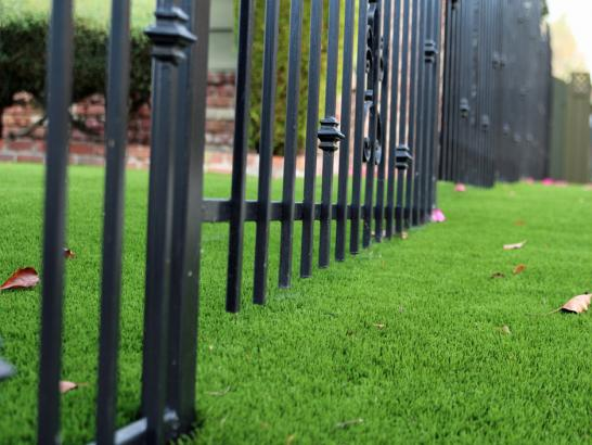 Artificial Grass Photos: Synthetic Turf Golinda Texas Lawn  Front Yard