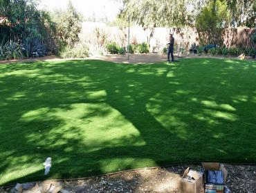 Artificial Grass Photos: Synthetic Turf Harker Heights Texas  Landscape  Back Yard