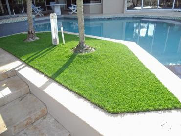 Artificial Grass Photos: Synthetic Turf Jollyville Texas  Landscape  Swimming Pools