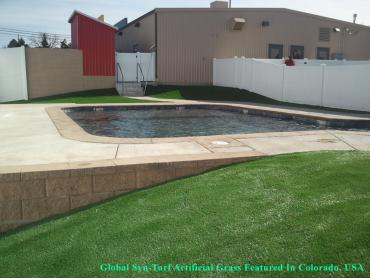 Synthetic Turf Lost Creek Texas Lawn  Swimming Pools Commercial artificial grass
