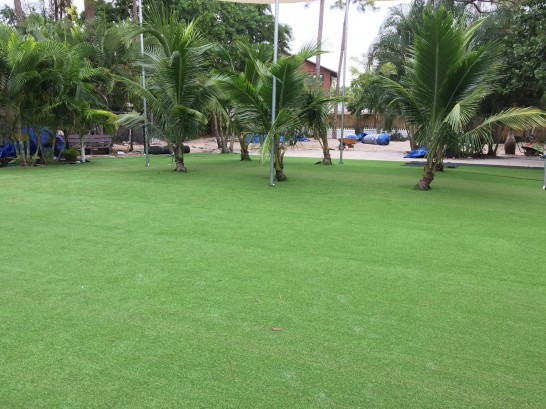 Artificial Grass Photos: Synthetic Turf Normangee, Texas Landscape Ideas, Commercial Landscape