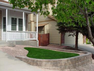 Artificial Grass Photos: Synthetic Turf Rollingwood Texas Lawn  Front Yard