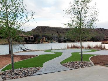 Synthetic Turf San Leanna Texas  Landscape artificial grass