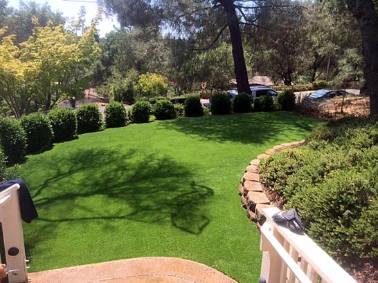 Artificial Grass Photos: Synthetic Turf Scenic Oaks Texas Lawn  Back Yard
