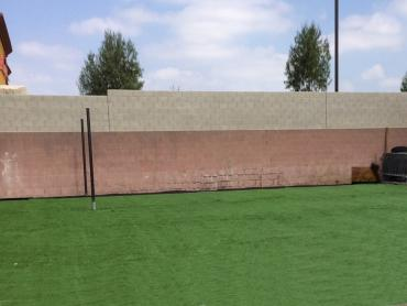Artificial Grass Photos: Synthetic Turf Sports Applications Lexington Texas