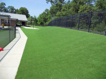 Artificial Grass Photos: Synthetic Turf Uhland Texas  Landscape  Commercial Landscape