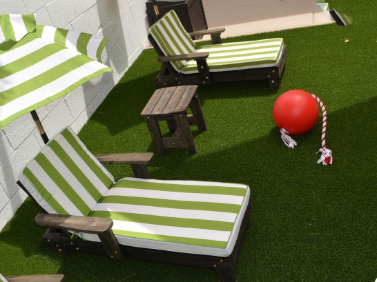 Artificial Grass Photos: Synthetic Turf West, Texas Roof Top, Backyards